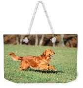 Golden Retriever Weekender Tote Bag