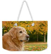 Golden Retriever Dog Autumn Leaves Weekender Tote Bag by Jennie Marie Schell