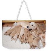 Golden Retriever Dog, Litter Suckling Weekender Tote Bag