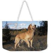 Golden Retriever Dog Weekender Tote Bag
