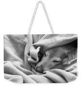 Golden Retriever Dog Under The Blanket Weekender Tote Bag