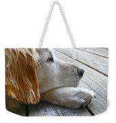 Golden Retriever Dog Waiting Weekender Tote Bag