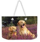 Golden Retriever Dogs In Heather Weekender Tote Bag