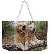Golden Retriever Dogs Weekender Tote Bag