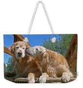 Golden Retriever Dogs The Kiss Weekender Tote Bag