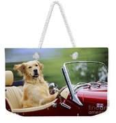Golden Retriever In Car Weekender Tote Bag