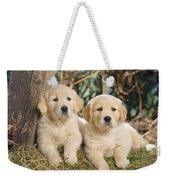 Golden Retriever Puppies In The Woods Weekender Tote Bag