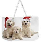 Golden Retriever Puppies With Christmas Weekender Tote Bag