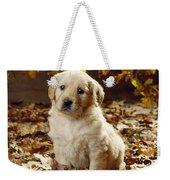 Golden Retriever Puppy Dog In Fallen Weekender Tote Bag
