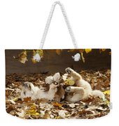 Golden Retriever Puppy In Leaves Weekender Tote Bag