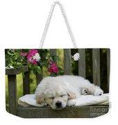 Golden Retriever Puppy Sleeping Weekender Tote Bag