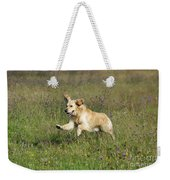 Golden Retriever Running Weekender Tote Bag