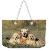 Golden Retriever With Puppies Weekender Tote Bag