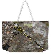 Golden-ringed Dragonfly Weekender Tote Bag