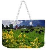 Golden Rod Black Angus Cattle  Weekender Tote Bag