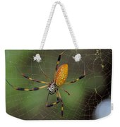 Golden Silk Spider 9  Weekender Tote Bag