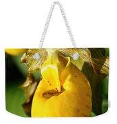 Golden Slipper Weekender Tote Bag
