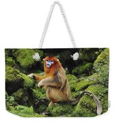 Golden Snub-nosed Monkey Male China Weekender Tote Bag