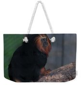 Golden Tamarin Weekender Tote Bag