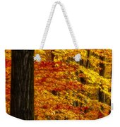 Golden Trees Glowing Weekender Tote Bag