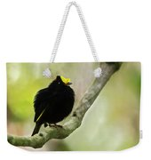 Golden-winged Manakin Weekender Tote Bag