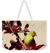 Goldfinch In Tree 031015a Weekender Tote Bag