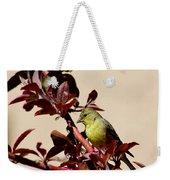 Goldfinch In Tree 031015aa Weekender Tote Bag