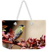 Goldfinch On Branch 031015aab Weekender Tote Bag