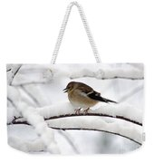 Goldfinch On Snowy Branches Weekender Tote Bag