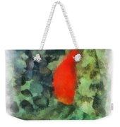 Goldfish Photo Art 04 Weekender Tote Bag