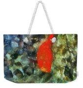 Goldfish Photo Art 05 Weekender Tote Bag