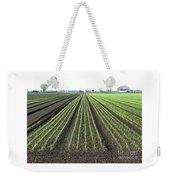 Good Earth Weekender Tote Bag