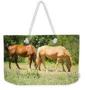Marble Falls Texas In Good Grass Weekender Tote Bag