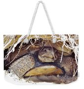 Gopher Tortoise Weekender Tote Bag