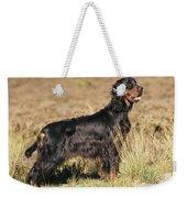 Gordon Setter Dog Weekender Tote Bag