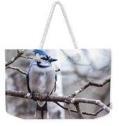 Gorgeous Blue Jay Weekender Tote Bag