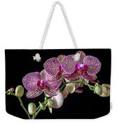 Gorgeous Orchids Weekender Tote Bag