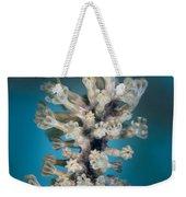 Gorgonian Weekender Tote Bag