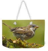 Gorrion House Sparrow Weekender Tote Bag