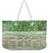 Goslings All In A Row Weekender Tote Bag