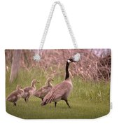 Goslings On A Walk Weekender Tote Bag