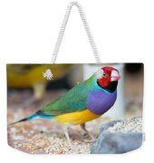Gouldian Finch Weekender Tote Bag