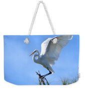 Graceful Landing Weekender Tote Bag