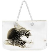 Grand Kitty Cuteness 3 High Key Weekender Tote Bag