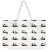 Grand Kitty Cuteness Bw 40 Weekender Tote Bag by Andee Design