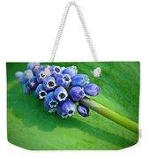 Grape Hyacinth Spike  Weekender Tote Bag