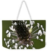 Grass Bloom Weekender Tote Bag