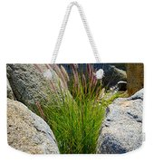 Grasses In Oasis On Borrego Palm Canyon Trail In Anza-borrego Desert Sp-ca Weekender Tote Bag