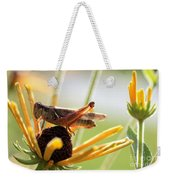 Grasshopper Antena Up Weekender Tote Bag