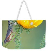 Grasshopper Be Still Weekender Tote Bag